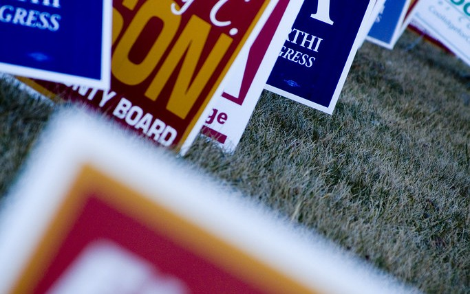 Voting Signs on a Lawn